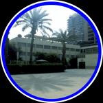 Школа в Каире