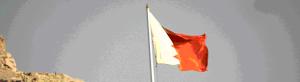 Бахрейна флаг