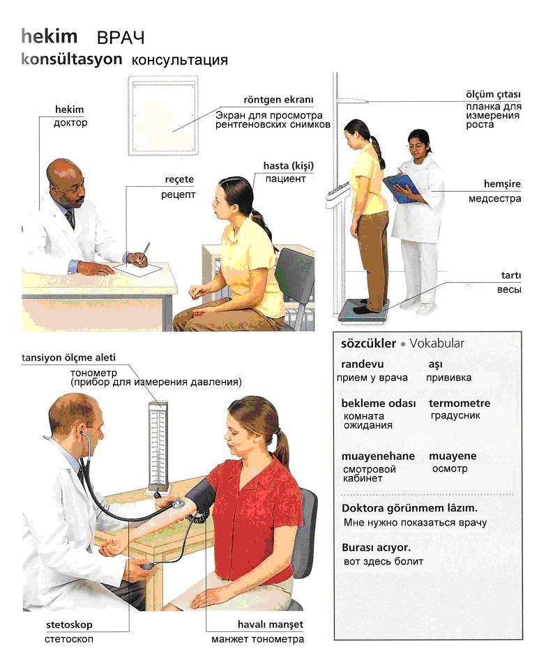 Медицина 6