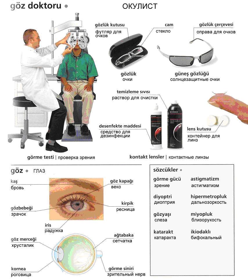 Медицина 8