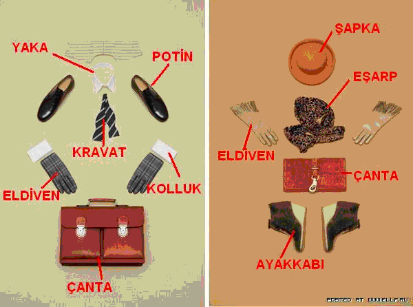 Одежда 24