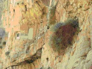 Монастырь Фара1