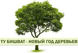 Ту би-шват, Новый год для деревьев