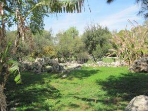 Камни в парке Ататюрка