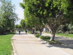 Приморский бульвар в парке Ататюрк