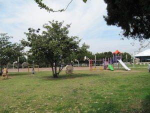 Спортивная площадка в парке Ататюрка