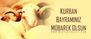 Когда отмечают Курбан-байрам в Турции в 2017 году