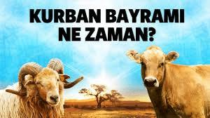 Курбан-байрам в Турции в августе 2020 года