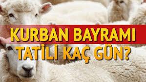 Курбан-байрам в Турции в 2021 году.
