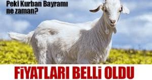 Праздник Курбан-байрам в Турции в 2019 году