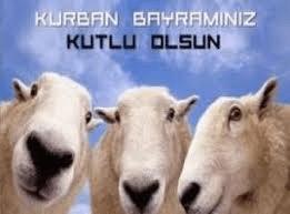 Праздник Курбан-байрам в Турции в 2020 году.