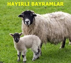 Праздник Курбан-байрам в Турции в 2022 году