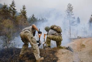 День пожарного - спасателя в Грузии
