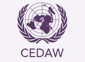 Международная конвенция о ликвидации дискриминации в отношении женщин